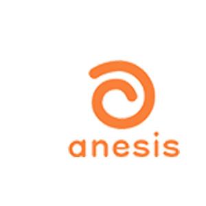 アネシス-anesis-